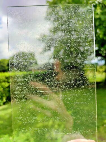 bee venom on the glass
